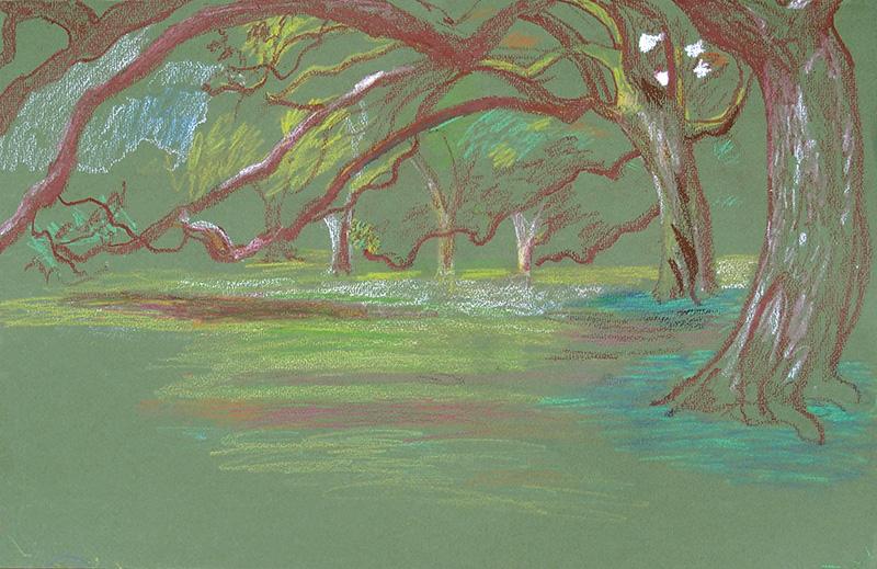 tree-aubudon-clemence-devienne