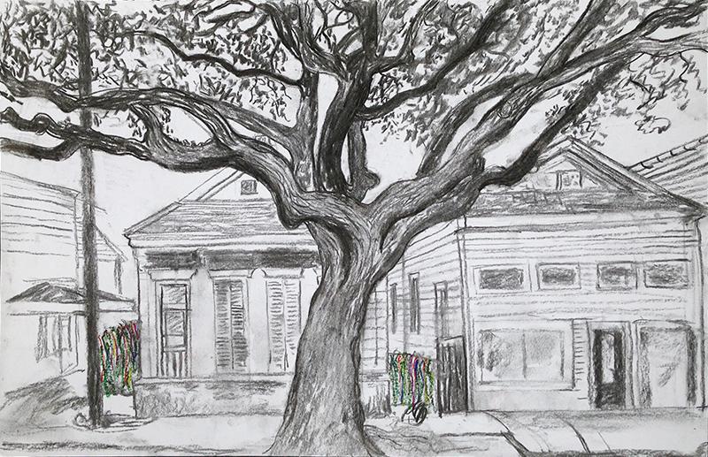 tree-magazine-street-clemence-devienne